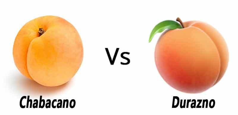 Qué diferencia hay entre el durazno y el chabacano